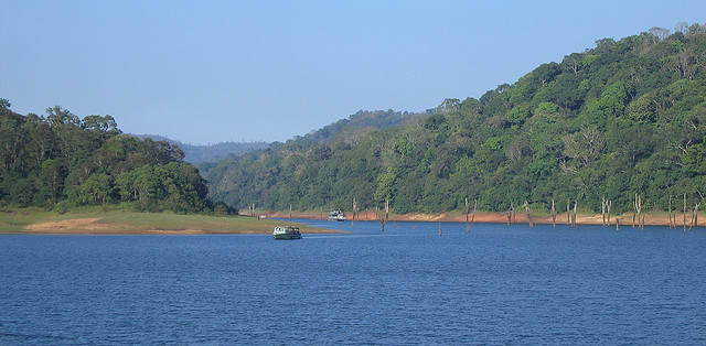 One of the most popular ecoparks of India for its breathtaking natural beauty and wildlife, Periyar National Park (Kerela) is situated on the Western Ghats. You can spot herds of elephants near the Periyar Lake, where rafting is an adventure tourists love to explore. If you are lucky enough, you may even come across tigers and other wildlife attractions here.