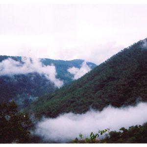Kodaikanal-mountain destinations in India