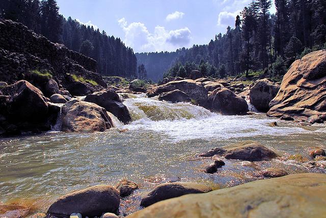 Srinagar-Jammu & Kashmir-India