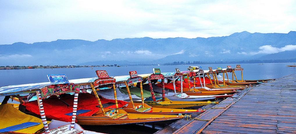 Srinagar-India