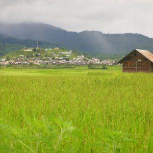 Ziro Hill Station Arunachal Pradesh. 7 Wonders North East India