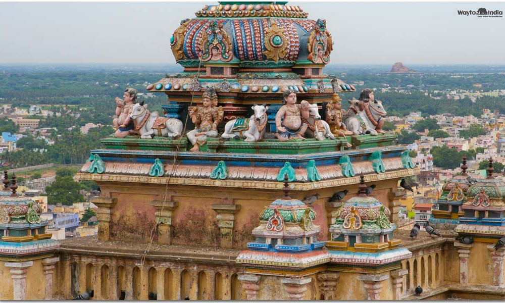 A Pilgrimage Where Life Is Worshiped – South India