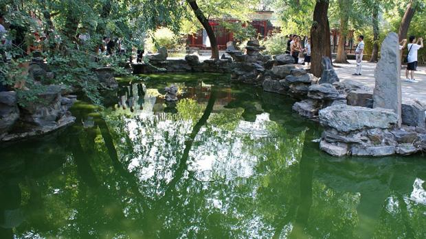dhilon-pond